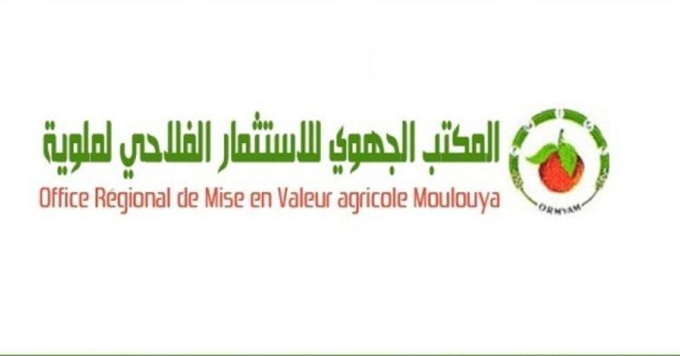 مباراة توظيفالمكتب الجهوي للاستثمار الفلاحي لملوية