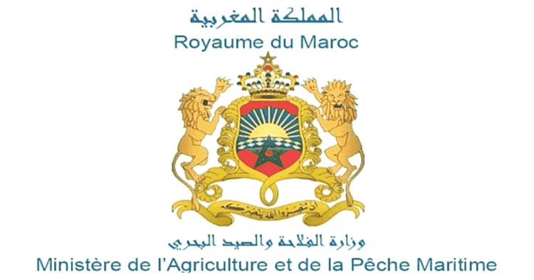 Ministére de l'agriculture recrutement emploi